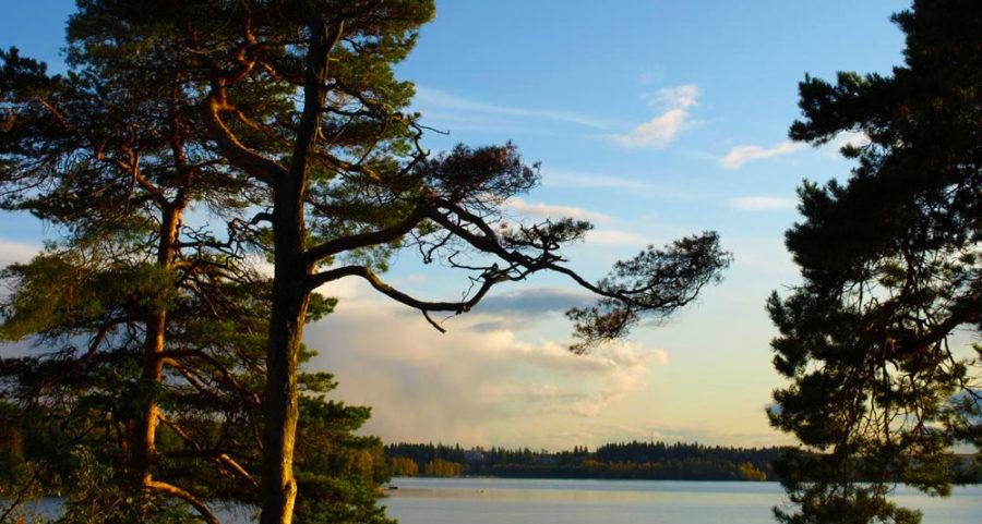 finnishreformation